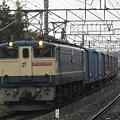 写真: ef65-1064-20080320