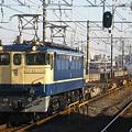 写真: ef65-1119-20081223