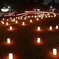 写真: 奈良国立博物館_燈花会2