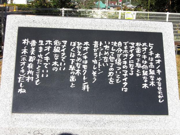 ホオノキ(詩)