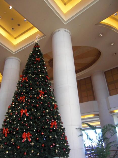 お台場日航ホテルのクリスマスツリー