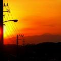 写真: 富士のあたま