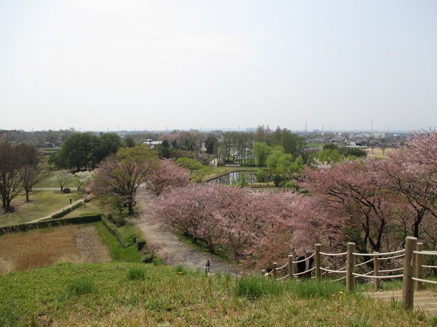 県立さきたま古墳公園(行田市)