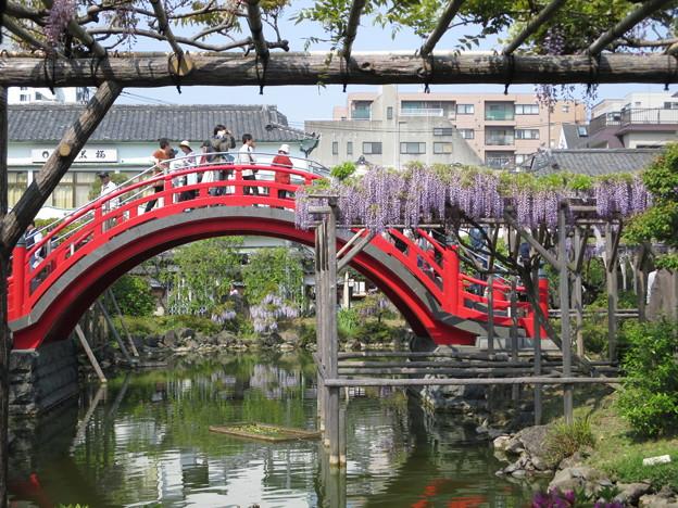 14.04.26.亀戸天神社(江東区)