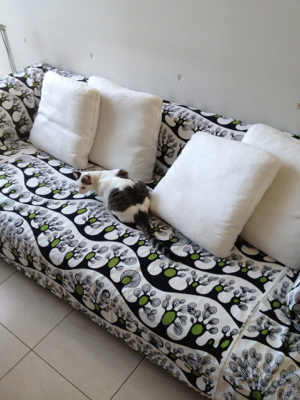 ソファのカバーを変えました