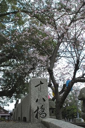 諏訪神社3