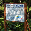 Photos: dDSC_5148.jpg