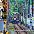 Photos: くまモン電車。