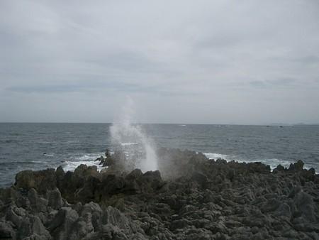 siohukiiwa2