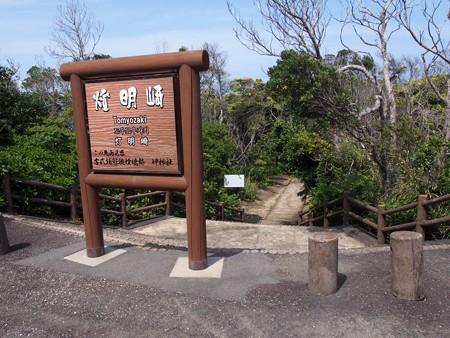 toumeisaki_taiji10