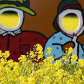 菜の花のカップル