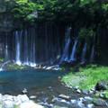 Photos: 白糸の滝   ソフト加工