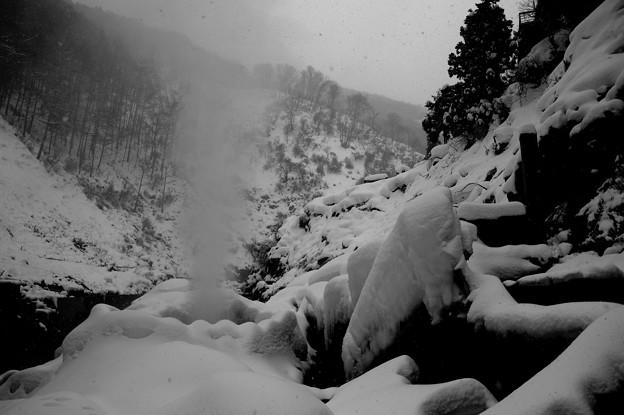 地獄谷温泉の国の天然記念物 雪の渋の地獄谷噴泉・・