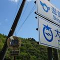 Photos: 滋賀r3の40高中・2