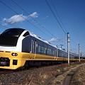 Photos: E653系 特急フレッシュひたち(常磐線)(2008年12月撮影)