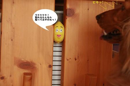 生意気なレモン 1
