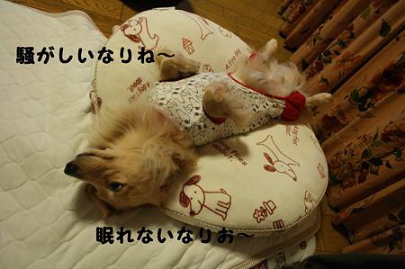 眠れない 1