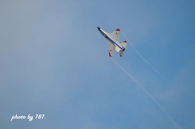 岐阜基地航空祭2008_014L