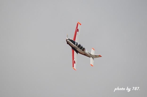 岐阜基地航空祭2008_001L