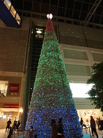 キャナルガーデンのツリー(2)