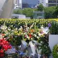 Photos: 広島平和公園