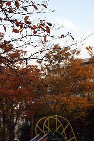 名瀬下第三公園 01