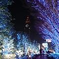 写真: 新宿サザンライツ 02
