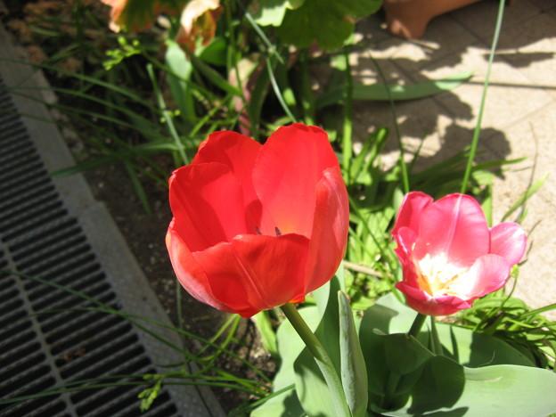 Photos: IMG_1001