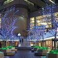 写真: 横浜・クイーンズスクエアその2